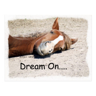 Dream On Horse Postcard