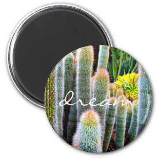 """Dream"" orange-tipped fuzzy green cactus photo Magnet"