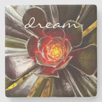 """Dream"" Quote Orange & Black Cactus Close-up Photo Stone Coaster"