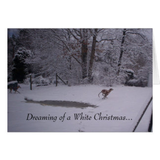 Dreaming of a White Christmas... Cards