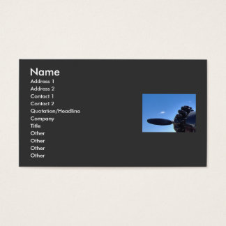 Dreaming of Blue Skies Business Card
