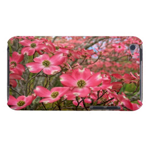 Dreaming of Pink Dogwood Blooms in Spring! iPod Case-Mate Case