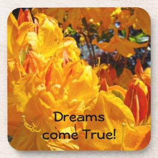 Dreams come True! cork coasters Orange Rhodies