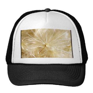 Dreams Mesh Hat