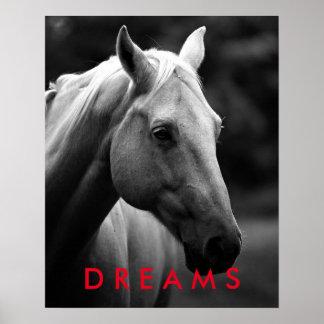 Dreams Motivational Black White Closeup Horse Poster