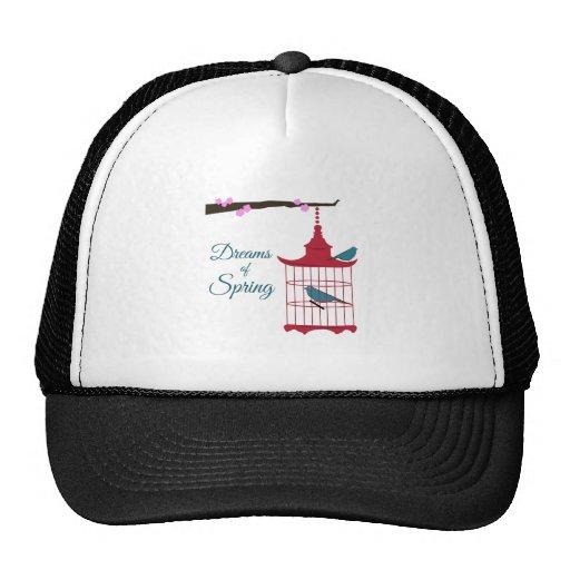Dreams of Spring Hats