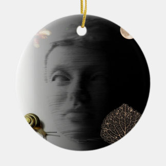 Dreamscape transitions.jpg christmas ornament