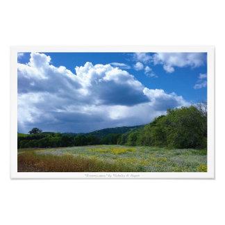 """Dreamscapes,"" Nature Decor Photographic Print"