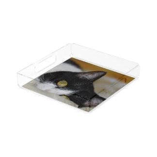 Dreamy cat acrylic tray