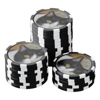 Dreamy cat poker chips