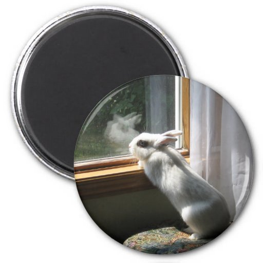 Dreamy Jimi 6 Cm Round Magnet