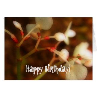 Dreamy Jungle Flowers; Happy Birthday Greeting Card