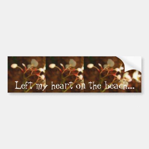 Dreamy Jungle Flowers; Mexico Souvenir Bumper Sticker