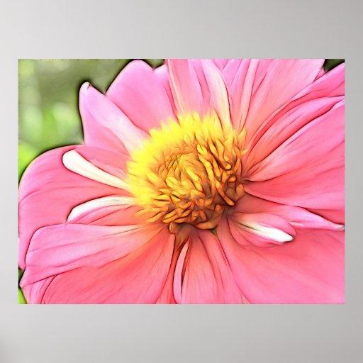 Dreamy Pink Dahlia Poster