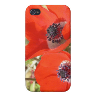 Dreamy Poppies i iPhone 4/4S Cases