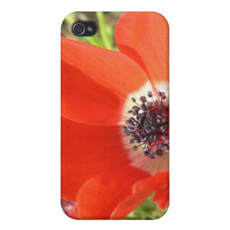 Dreamy Poppies iPhone Case Cases For iPhone 4