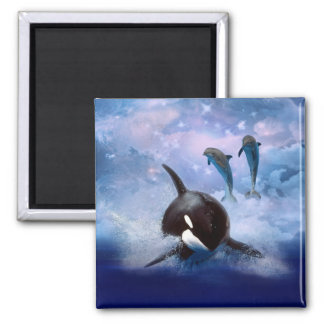 Dreamy Whale and dolphins play Square Magnet