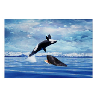 Dreamy Whales enjoying the ocean Poster