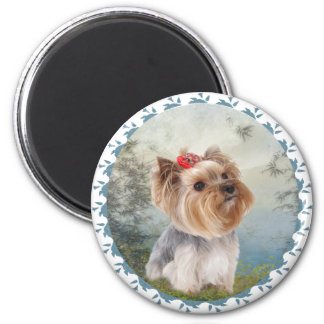 Dreamy Yorkshire Terrier Refrigerator Magnets