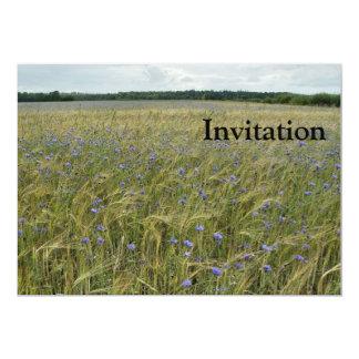 Drenthe - Corn Flower field 13 Cm X 18 Cm Invitation Card