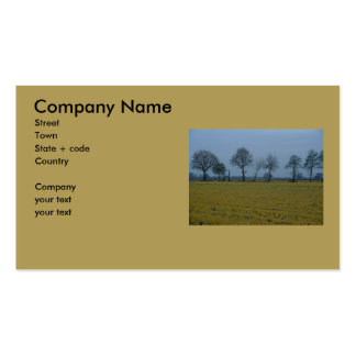 Drenthe - Yellow Grass with Trees Pack Of Standard Business Cards