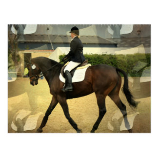 Dressage Competition Postcard