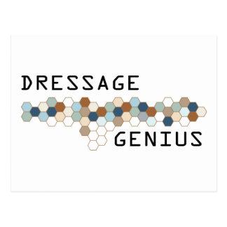 Dressage Genius Postcard