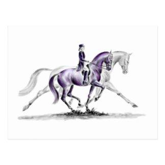 Dressage Horse in Trot Piaffe Postcard