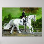 Dressage Horse Portrait I Poster