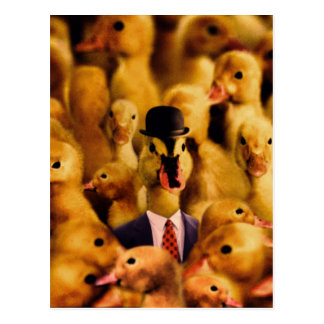 Dressed For Success Duck Postcard