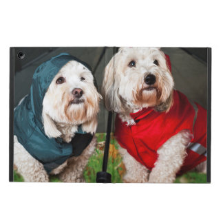 Dressed up dogs under umbrella case for iPad air