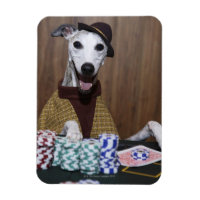 Dressed up Whippet dog at gambling table