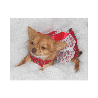 dressy chihuahua printprint gallery wrapped canvas