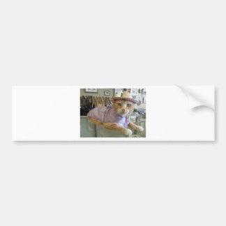 Dressy Claude Bumper Sticker
