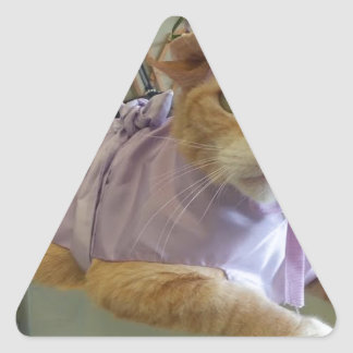 Dressy Claude Triangle Sticker