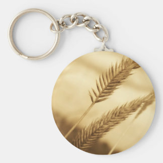 Drew Sullivan - Prairie Grass Basic Round Button Key Ring