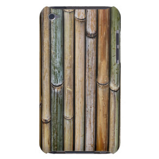 Dried Bamboo iPod Case-Mate Cases