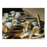 Dried Flower Poppy Pods 14 Cm X 19 Cm Invitation Card
