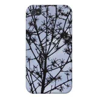 dried plant and sky iPhone 4/4S cases