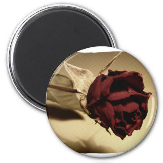 Dried Rose Photograph - Color 6 Cm Round Magnet