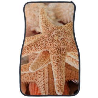 Dried sea stars sold as souvenirs 2 car mat