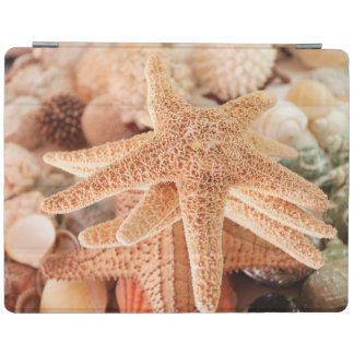 Dried sea stars sold as souvenirs 2 iPad cover