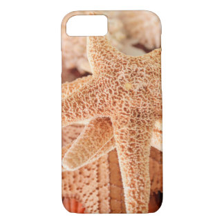 Dried sea stars sold as souvenirs 2 iPhone 7 case