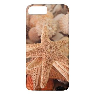 Dried sea stars sold as souvenirs iPhone 8 plus/7 plus case