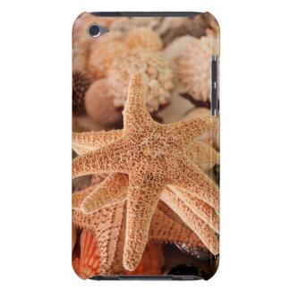 Dried sea stars sold as souvenirs iPod Case-Mate case