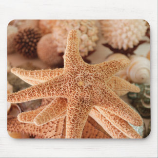 Dried sea stars sold as souvenirs mouse pad