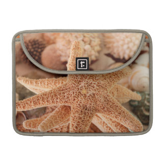 Dried sea stars sold as souvenirs sleeve for MacBook pro