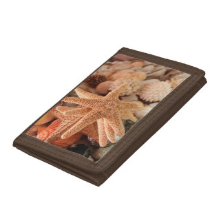 Dried sea stars sold as souvenirs trifold wallet