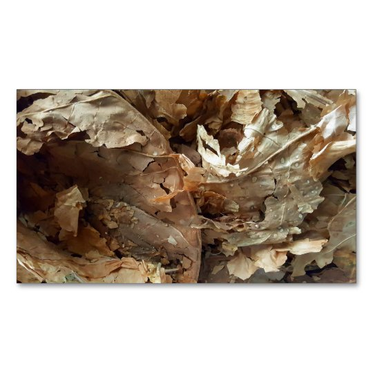 Dried tobacco leaves Magnetic business card