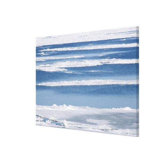 Drift Ice 5 Canvas Print